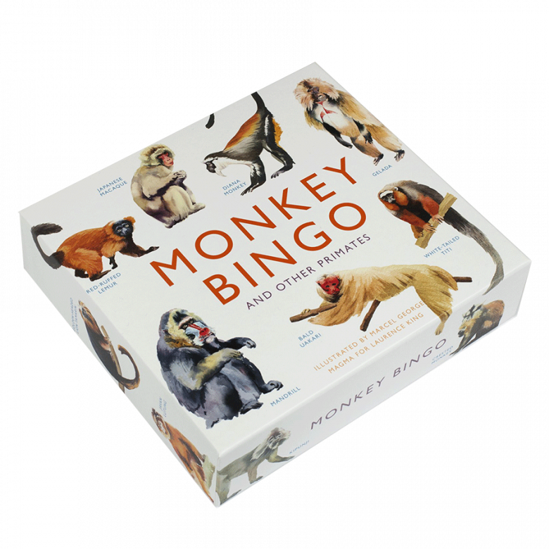 Monkey Bingo Game 6+