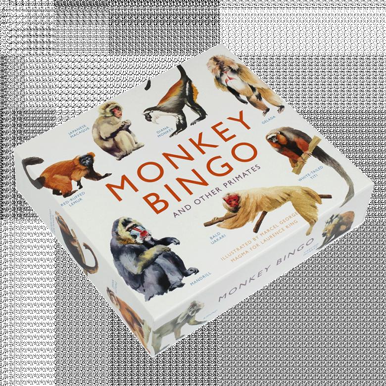 Monkey Bingo Game 6+