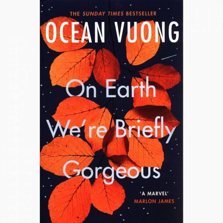 On Earth We're Briefly Gorgeous - Paperback Book