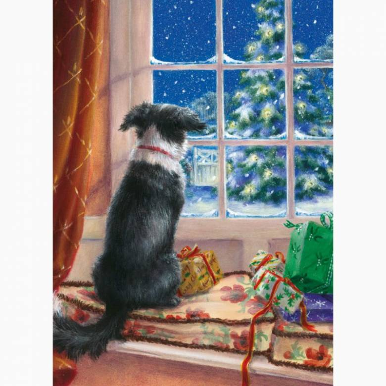 On The Windowsill - Pack Of 8 Christmas Cards By M&G