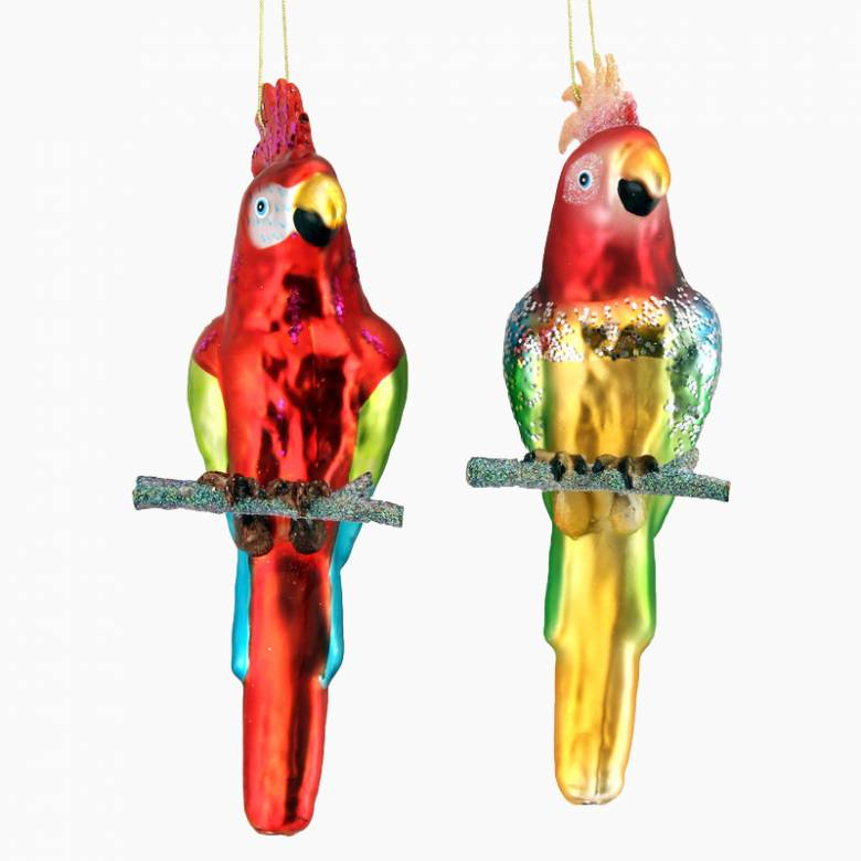 Painted Glass Parrot Christmas Decoration - Assorted Colours