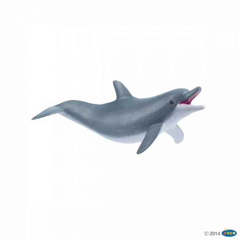Playing Dolphin PAPO WILD ANIMAL