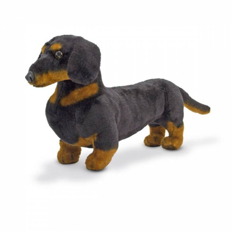 Dachshund Dog Soft Toy Animal