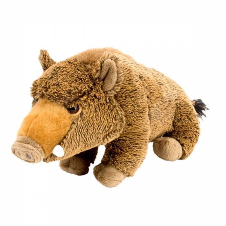 Wild Boar 30cm Cuddlekin Animal Soft Toy