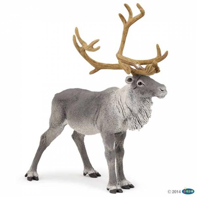 Reindeer PAPO WILD ANIMAL