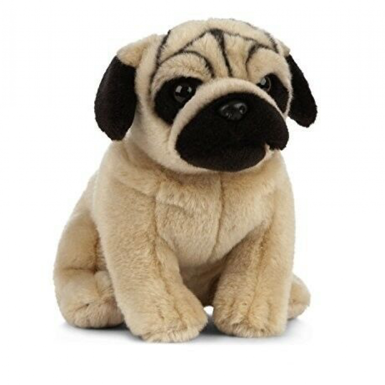 Pug Dog Soft Toy 0+