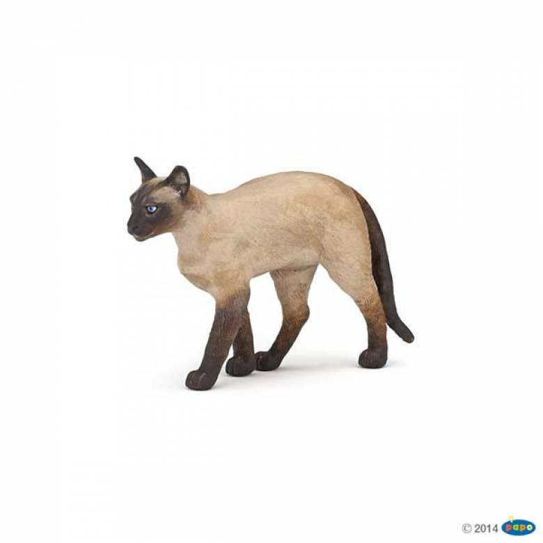 Siamese Cat PAPO ANIMAL