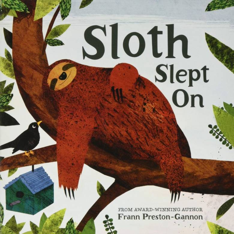 Sloth Slept On - Board Book