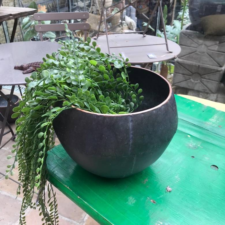 Small Curved Zinc Planter Pot
