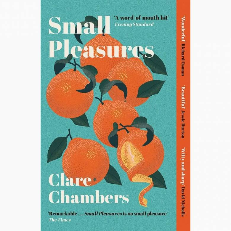 Small Pleasures By Clare Chambers - Paperback Book