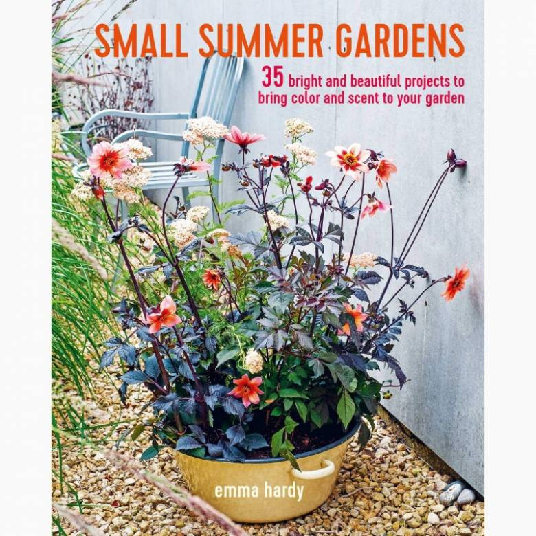 Small Summer Gardens - Paperback Book
