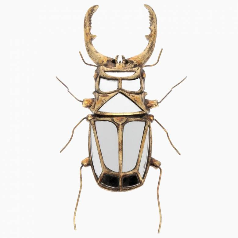 Stag Beetle Mirrored Wall Decoration