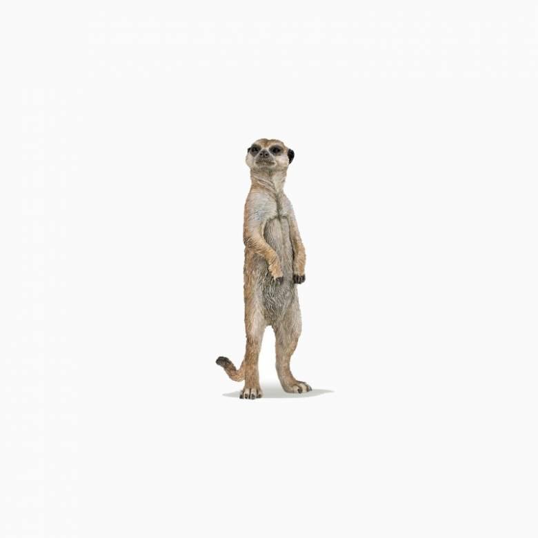 Standing Meerkat - Papo Wild Animal Figure
