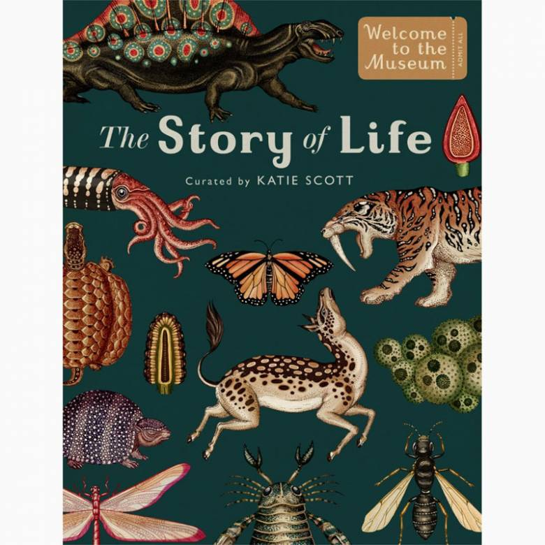 Story Of Life: Evolution Hardback Book