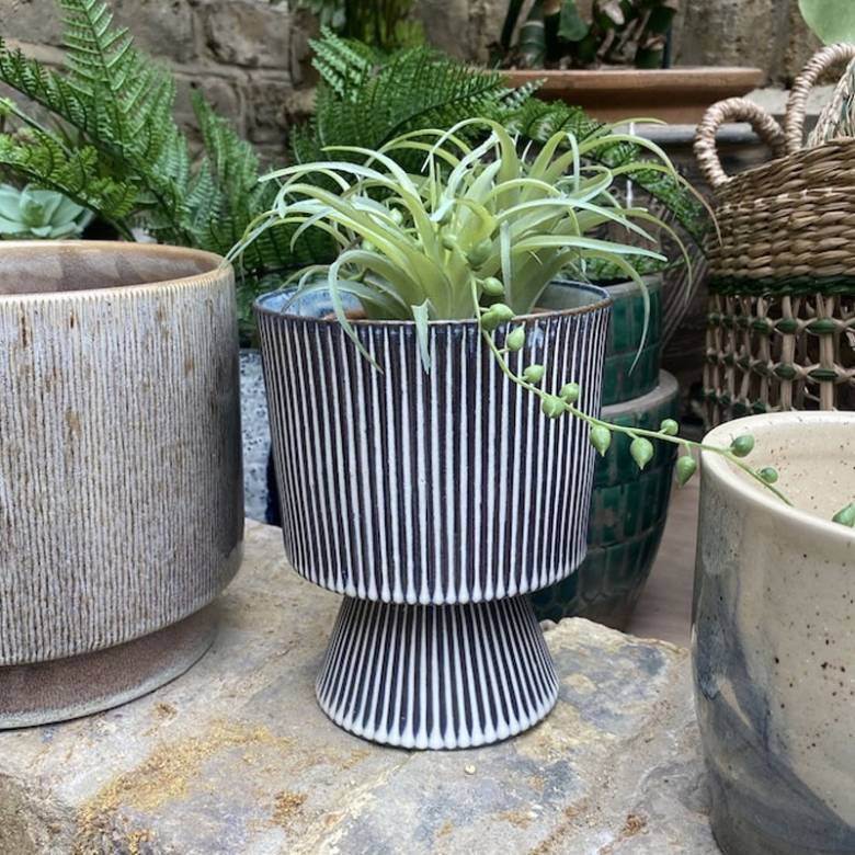Blue And White Striped Flowerpot On Plinth