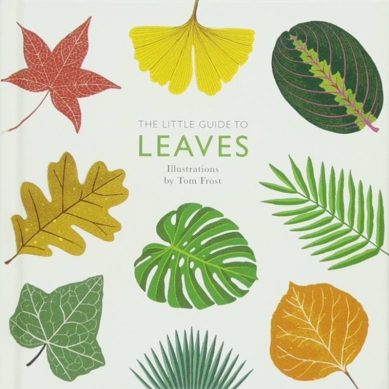 The Little Guide To Leaves - Hardback Book