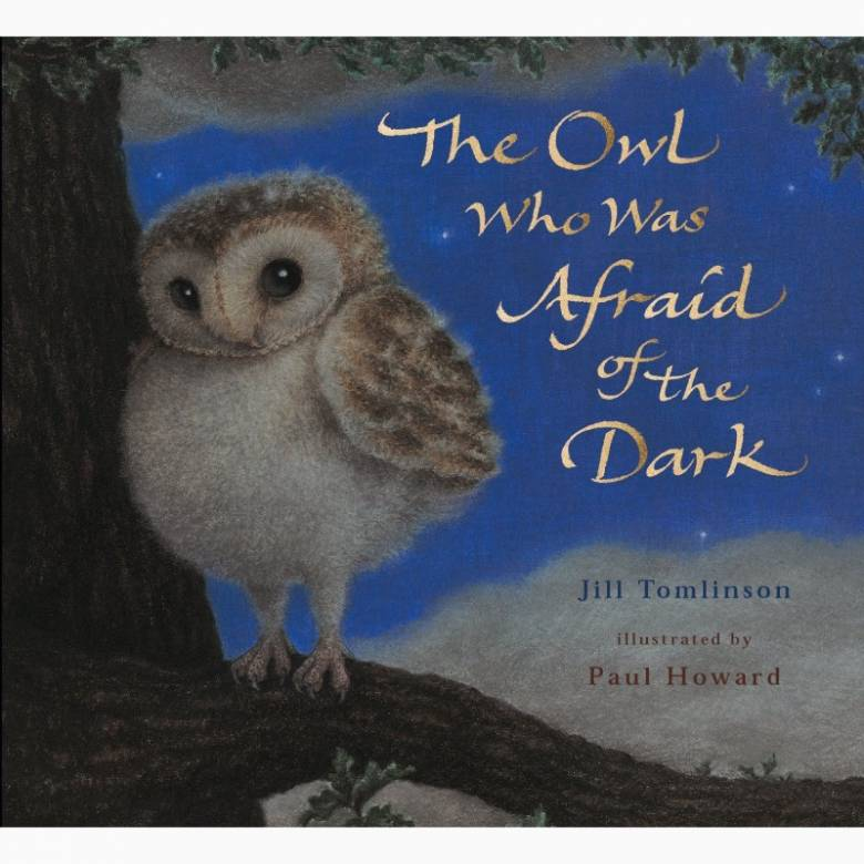 The Owl Who Was Afraid Of The Dark - Paperback Book