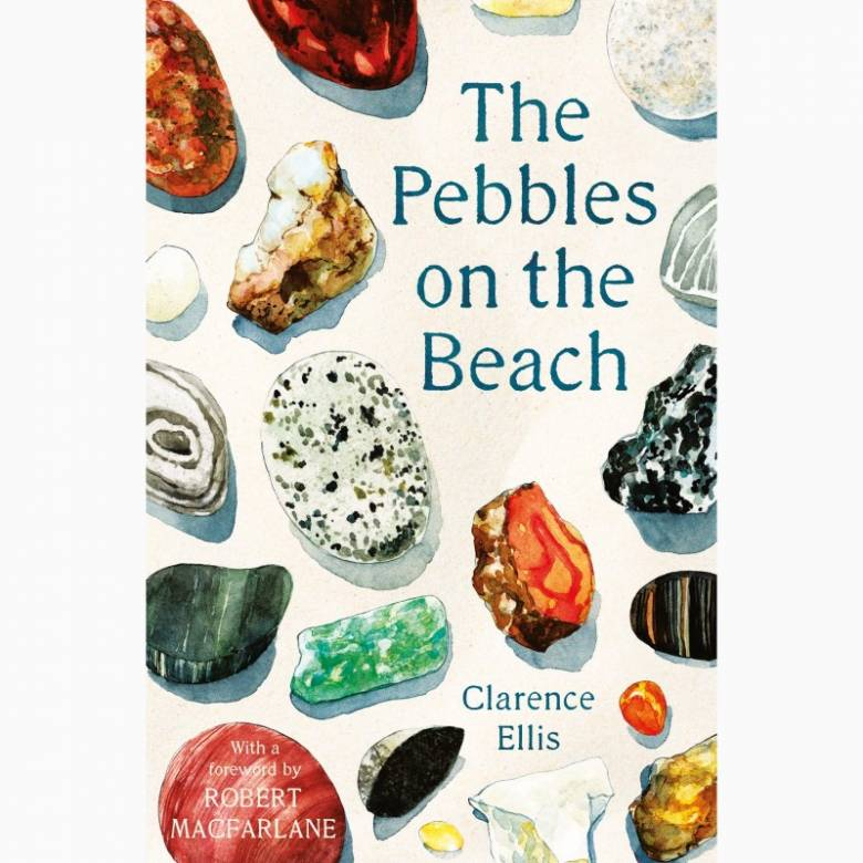 The Pebbles On The Beach - Paperback Book