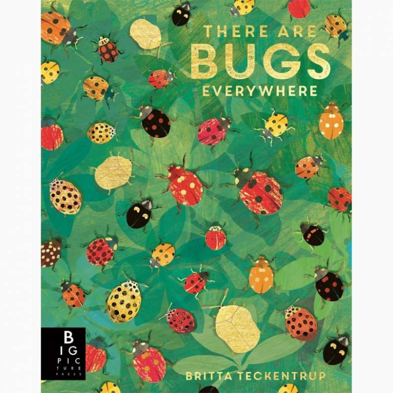 There are Bugs Everywhere - Hardback Book