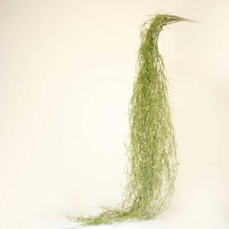 Trailing Spanish Moss Faux Plant