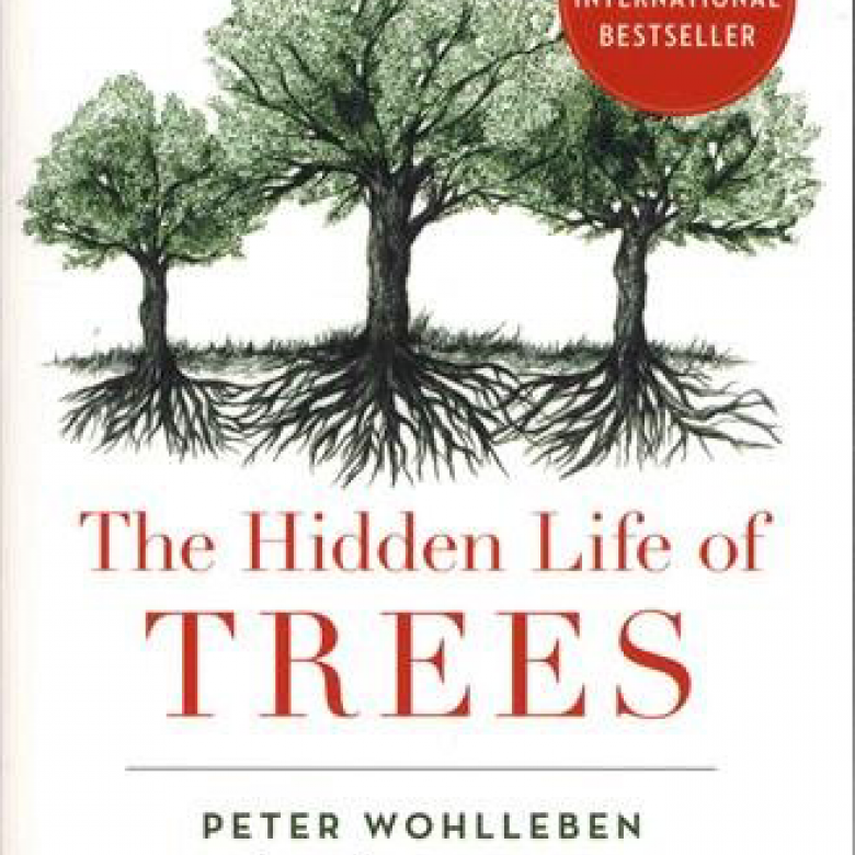 The Hidden Life Of Trees Paperback Book