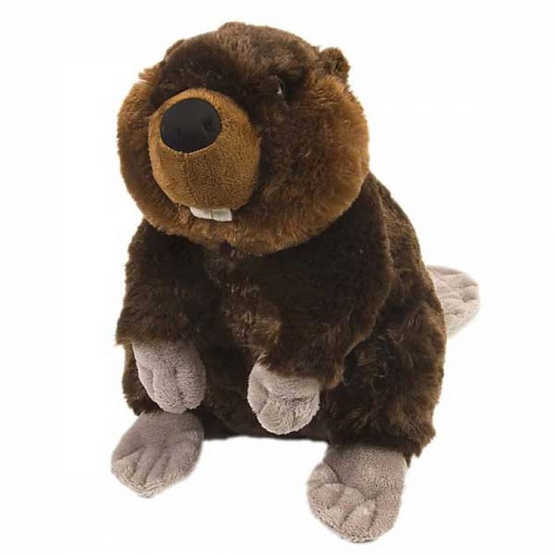 Beaver - Cuddlekin Animal Soft Toy