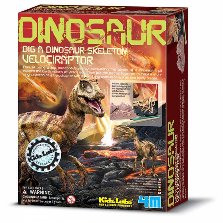 Velociraptor - Dig A Dinosuar Skeleton Kit 8+