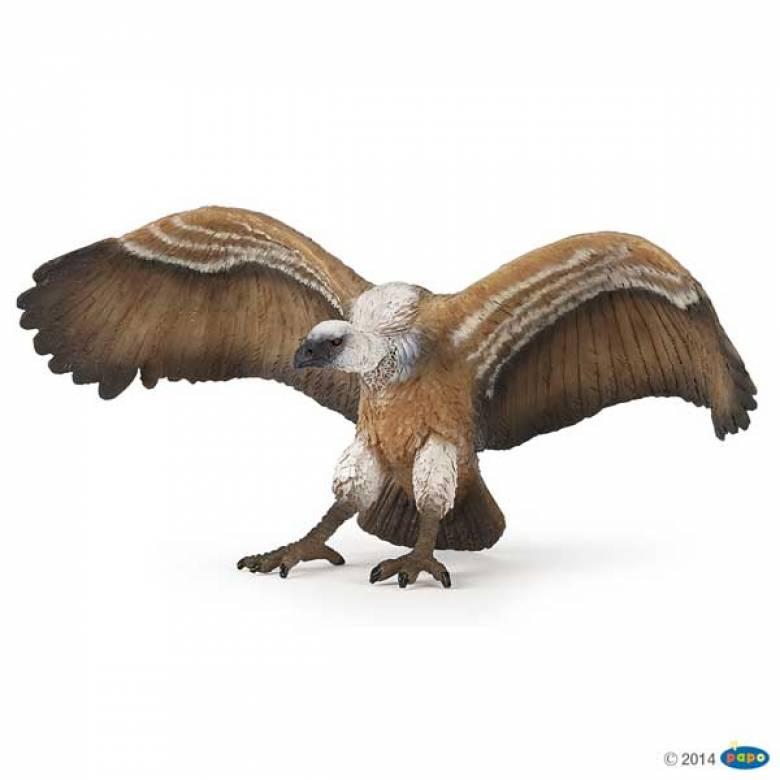 Vulture PAPO WILD ANIMAL