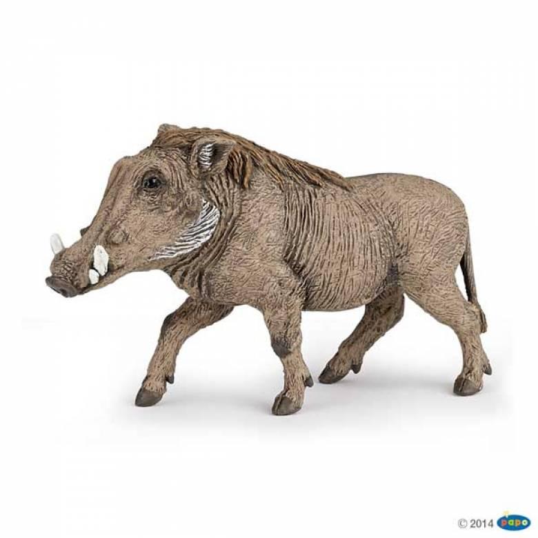 Warthog PAPO WILD ANIMAL