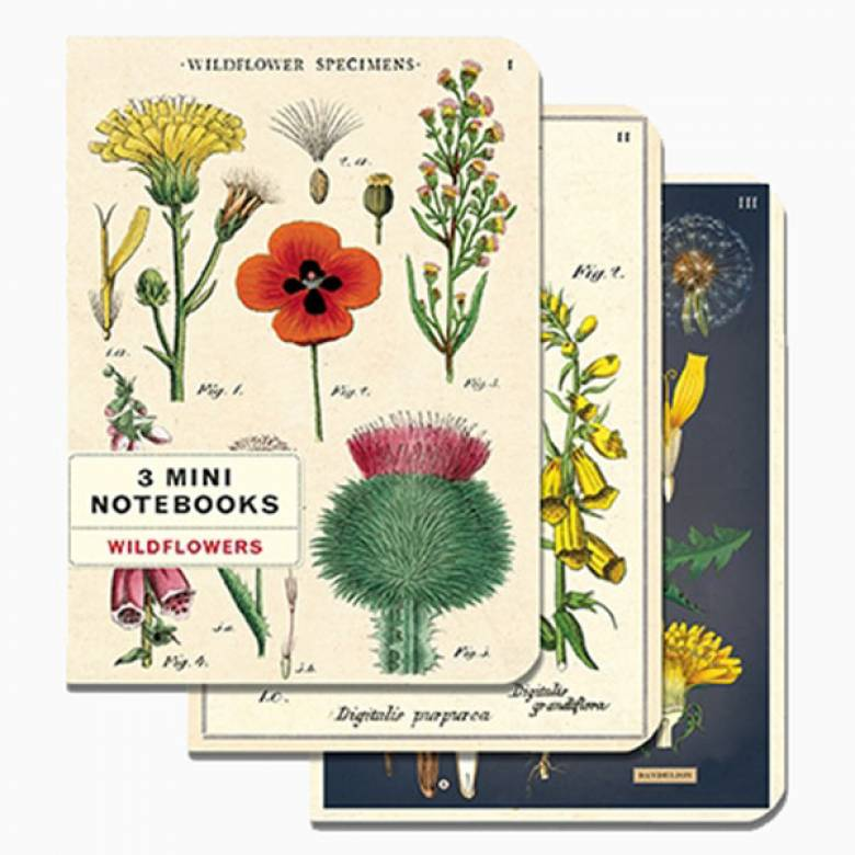 Set Of 3 Mini Notebooks - Wildflowers