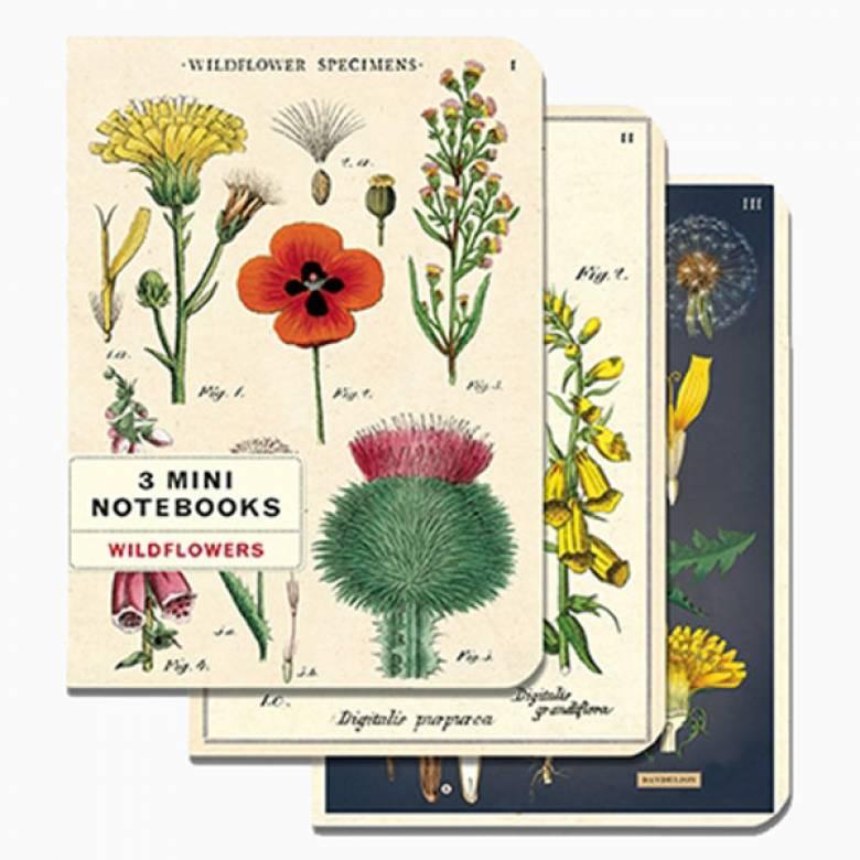 Set Of 3 Mini Notebooks - Wildflowers