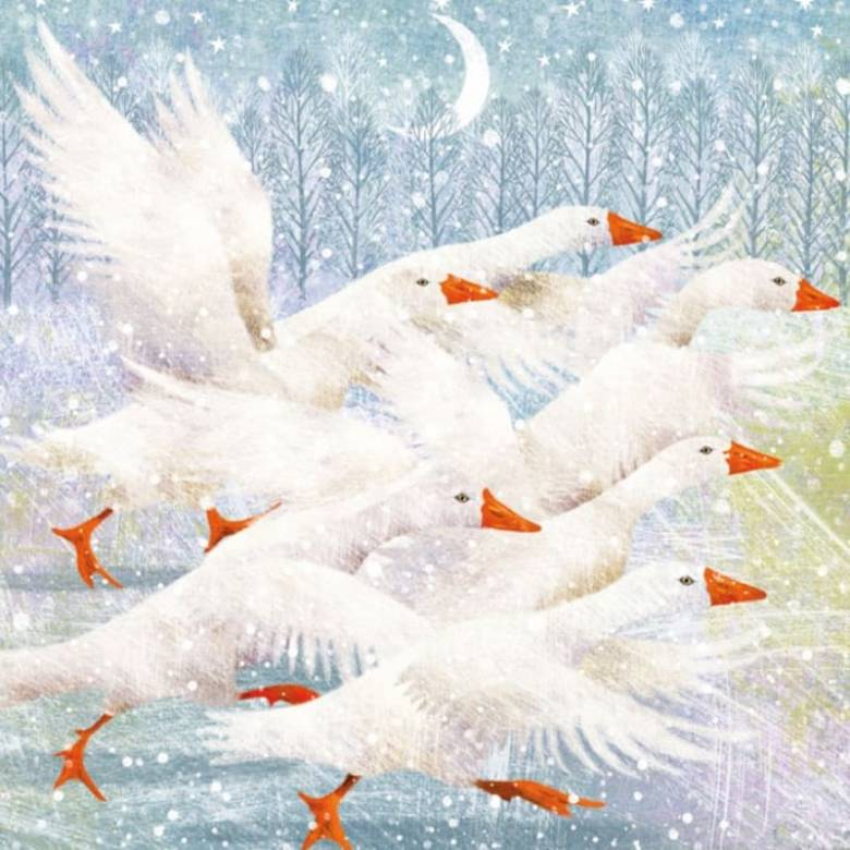 Winter Geese - Pack Of 8 Christmas Cards By Musems & Galleries