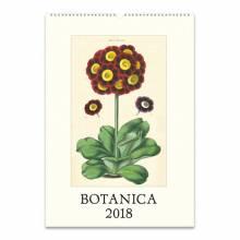 Botanica Wall Calendar By Cavallini