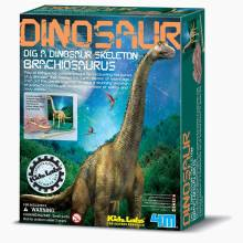 Dig A Brachiosaurus Skeleton Kit - Kidz Labs 8+