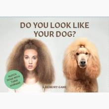 Do You Look Like Your Dog? Matching Game