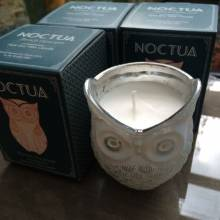 French Hyacinth - Owl Noctua Candle By Canova