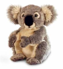 Koala Bear Soft Toy 28cm