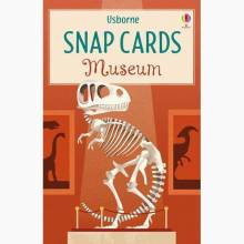 Museum Snap Card Game