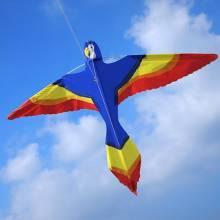 Parrot Kite 94x64cm
