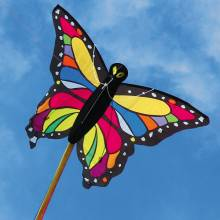 Tropical Butterfly Kite