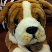 Butch The Bulldog Soft Toy 50cm.