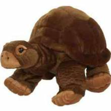 Galapagos Turtle Soft Toy 30cm.