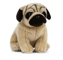 Pug Dog Soft Toy 0+