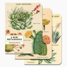 Set Of 3 Mini Notebooks - Succulents