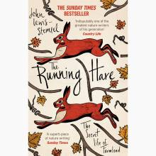 The Running Hare - Paperback Book