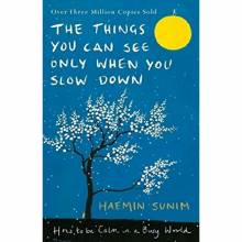 The Things You Can See Only When You Slow Down Hardback Book